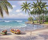 קנוס לצביעה - חוף ים