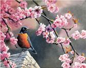 תמונת קנוס לצביעה - צפור בפריחה