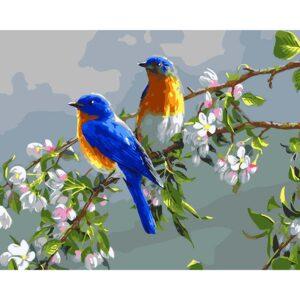 ציפורים יהלומים